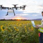 Land Surveyors conduct land use planning